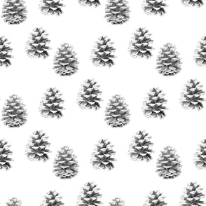 Pine Cones Monochrome - White