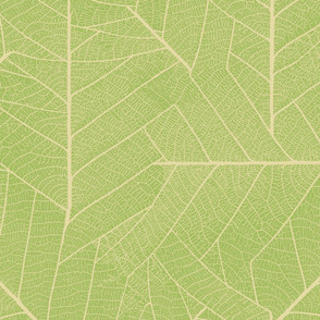 Leaf-pastel green
