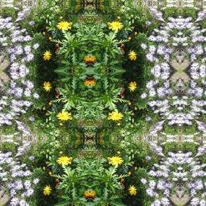 Wild Daisy Garden - Small Scale (Ref. 4784a)