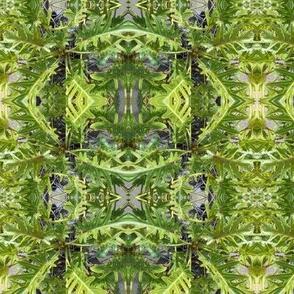 Wild Green Magic (Ref. 4515)