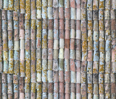 Roof Tiles of Assisi 1a