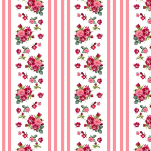 Vintage Floral Stripes Coral Rose