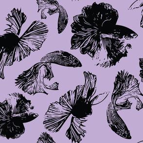 BetaFish Lavender