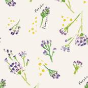 Sea Lavender-Cream color