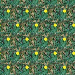 Dandelion Dots (Ref. 4616)