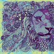 Lion zen okovango