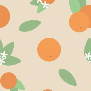 Large Vintage Florida Oranges