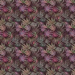 Darkly Cannabis