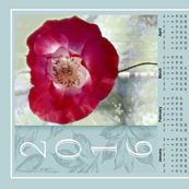 2016 Red Poppy 2016 Calendar Tea Towel