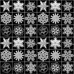 snowflakesblkwht
