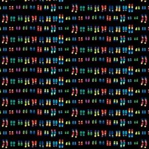 Chromosomes small