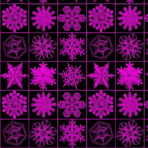 snowflakesblkpink