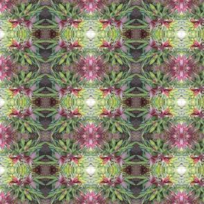 Leafy Garden Stars (Ref. 4533)
