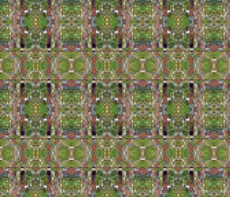succulent_colors_green