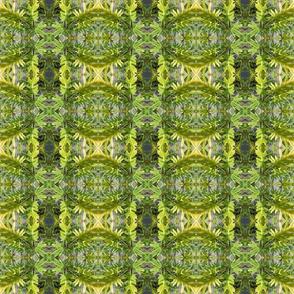 Island Leaf Magic (Ref. 4514)