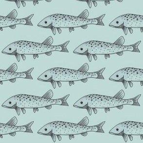 Fish on light blue