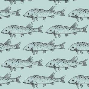 Fish on light blue