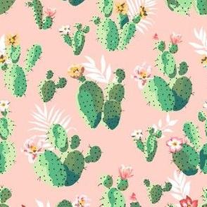 Trendy Pink Cactus