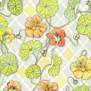 Pale Vintage Yellow Nasturtiums - large