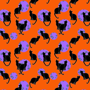 black cats and full moons orange