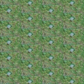 Dandelion Puffball Dots (Ref. 4615)