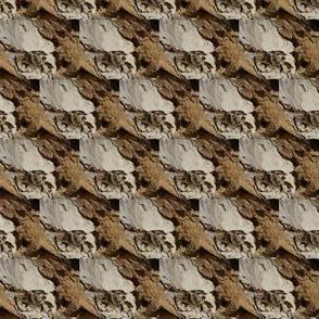 Bark Curls (Ref. 4584b)