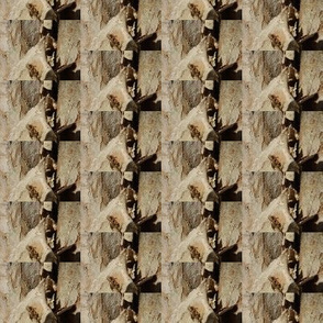 Layers Under the Bark (Ref. 4585b)