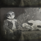 owl_head_kid_with_second_frame