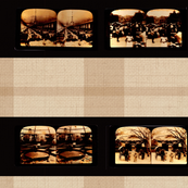 Stereoscope Plaid