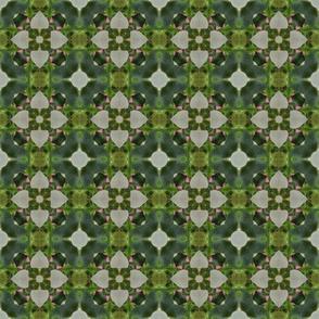 tiling_IMG_3058_3