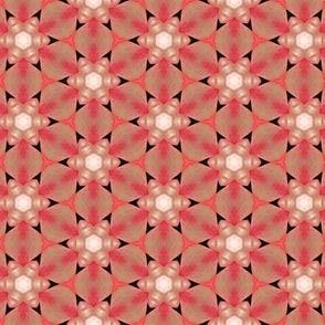 tiling_IMG_3059_7