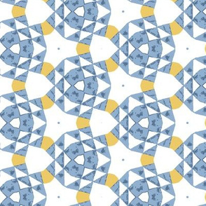 White and Blue Geometric Checks