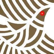 Doves Khaki Brown Red Eye