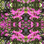 A Window in the Pink Floral Wall - Large Scale (Ref. 4540)