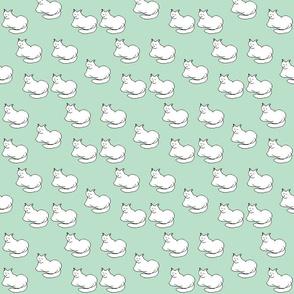 Sleelp cat white mint