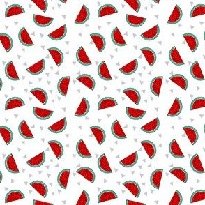 watermelon // fruit summer mini print