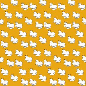 Sleelp cat white yellow