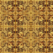 Lion zen Kalahari 64