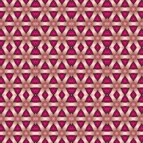 Kaleidoscope Pinks