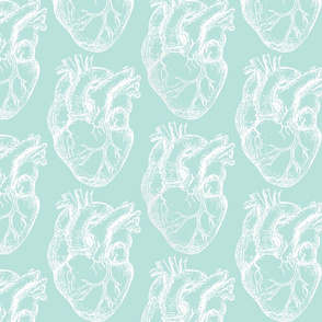 Hearts Anatomical White on Seafoam