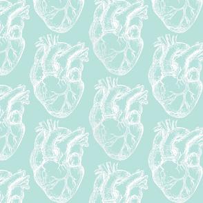Hearts Anatomical White on Seafoam