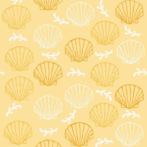 Scallop Shells in Orange Hues with White Coral