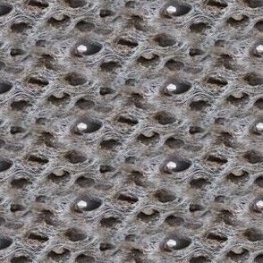 wood_holes