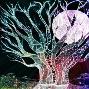 Baobab zen night