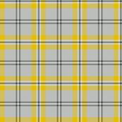 Cairngorm tartan