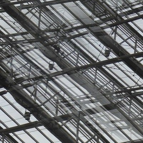 window_bars