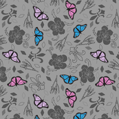 Colorful Butterflies On Gray