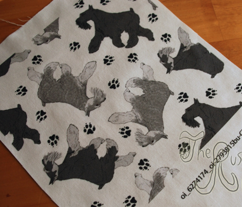 Trotting Miniature Schnauzers and paw prints - white