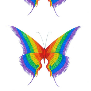 feb_2015_dragonflies_and_butterflies_014