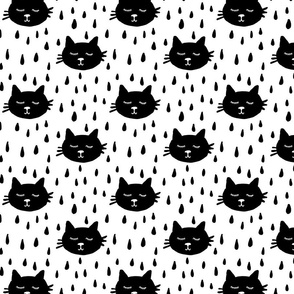 raining_cats